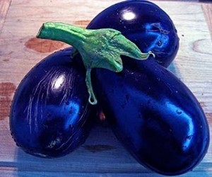e-beautiful-eggplants
