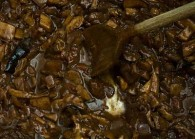 Wild Mushroom Ragu (Pasta Sauce)