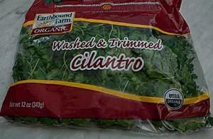 Bag of Cilantro from Costco