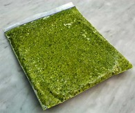 Cilantro Pesto