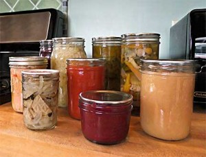 Sally's Preserves