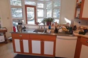 Kitchen Sink and WIndows