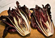Grilled Radicchio Recipe