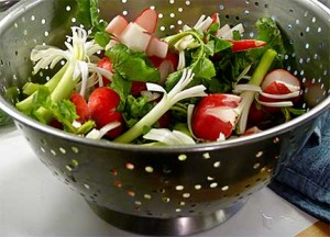 Fresh Radishes and Green Onions to Serve with Persian Food