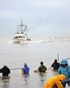 Dipnetting on Alaska's Kenai River