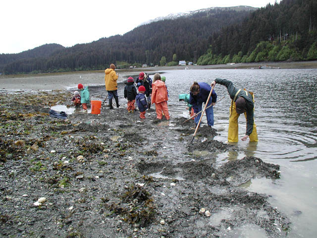 Everyone Digs Clams at McDonald Spit