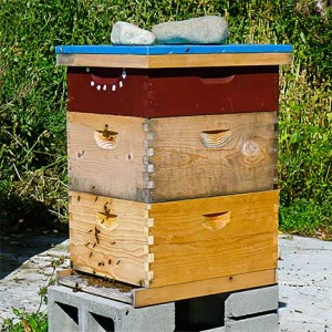 Beehive at Earthworks Farm, Palmer, Alaska