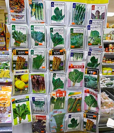 Seeds for Asian Greens at Central Market in ANC